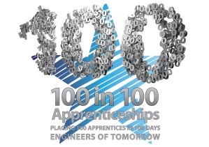 The 100 in 100 campaign logo for 2013
