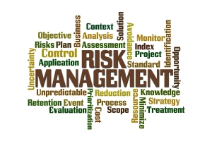 Commentators from the IRM have mapped out key potential risks for 2015