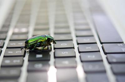 BugSweeping